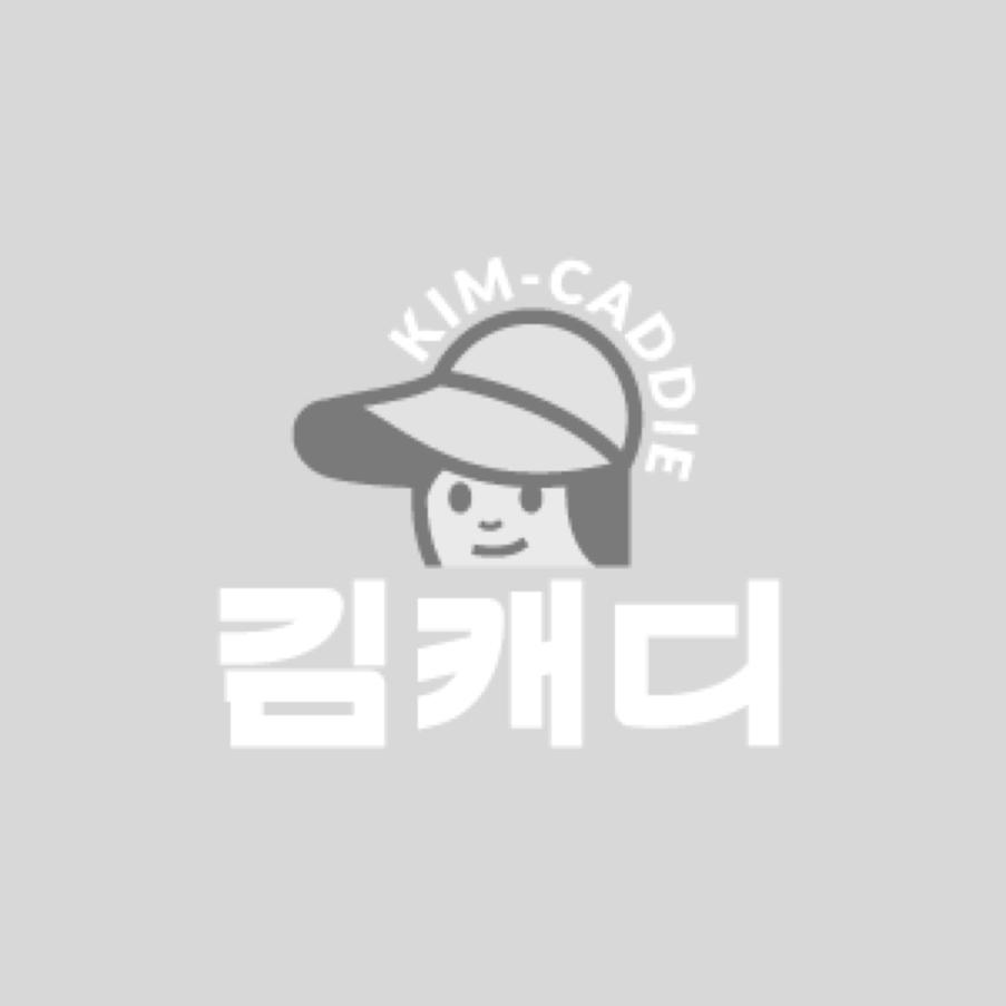 파인힐스크린골프 시흥